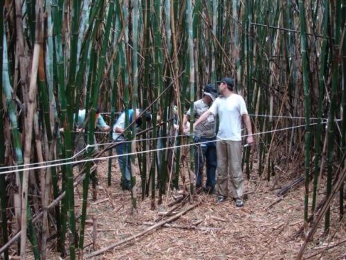 treinamento-com-trekking-empresarial-33
